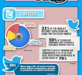 QooLab.com-Social-Media-Optimization-Infographics-2013